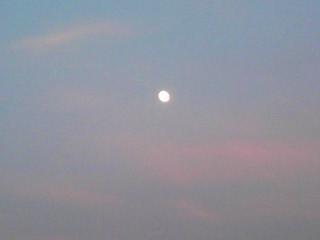 秦 美穂子 のブログ-夕刻の月